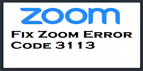 Fix Zoom Error Code 3113